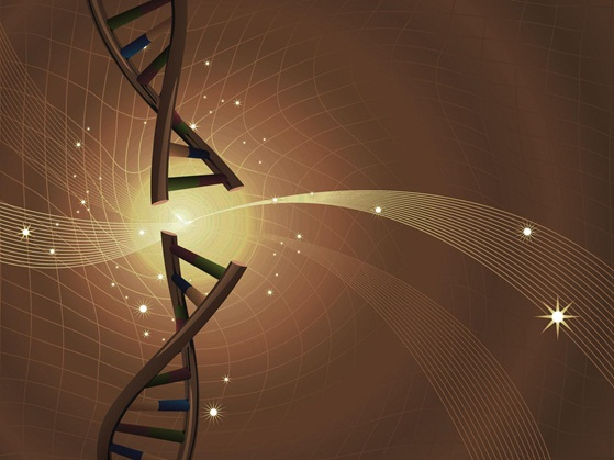 New Map Of Human Genome Proves 'Junk DNA' Has A Purpose