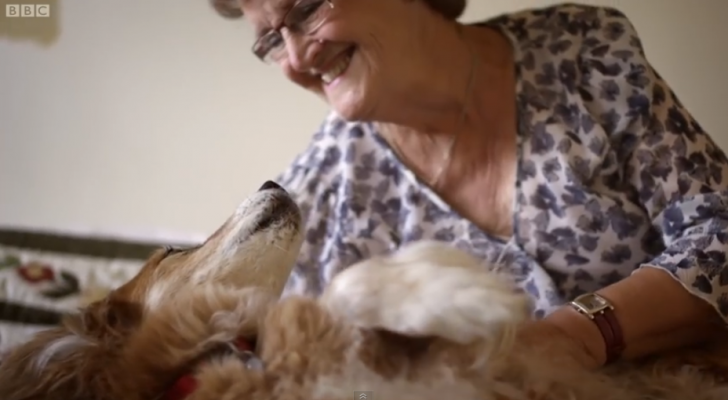 A Woman Thought Her Dog Was Dying – But What Actually Happened Saved Her Life