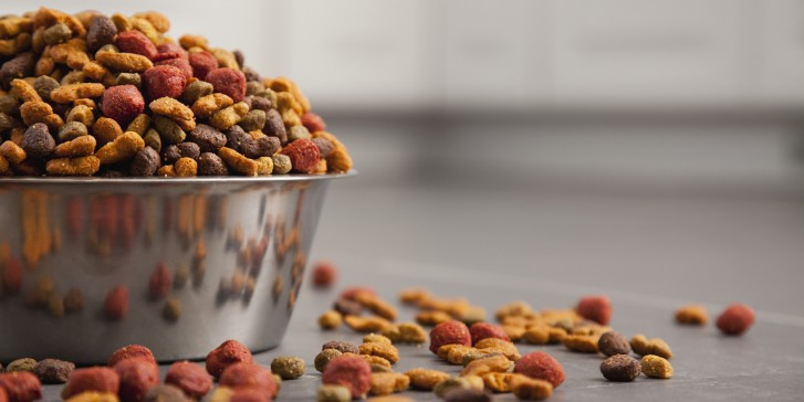 Are You Poisoning Your Pet? Things You Need To Know About The Pet Food Industry