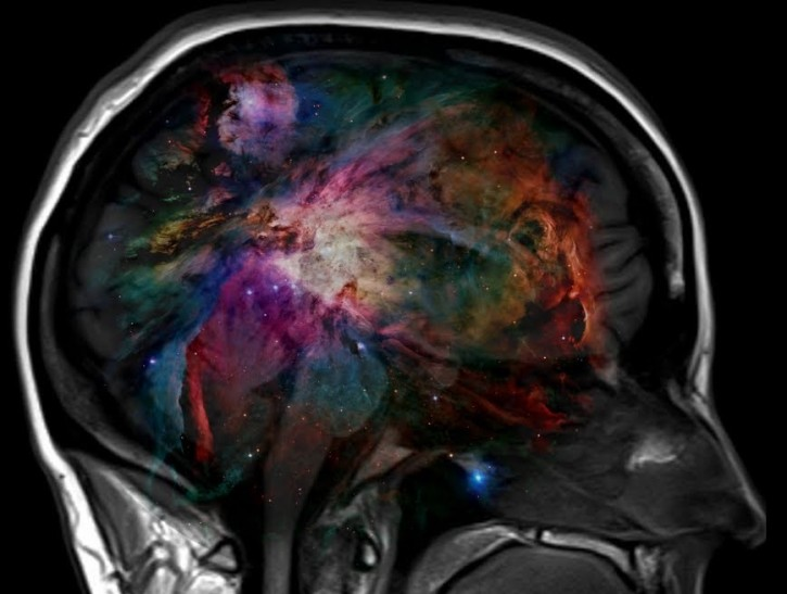 Is There An Organ In Your Brain Which Seats Your Soul? This May Be The Answer