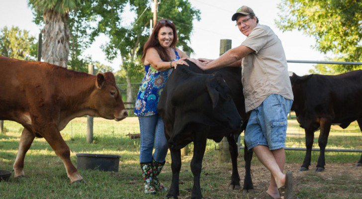 Why This Texas Couple Gave Up Cattle Farming To Be Vegans