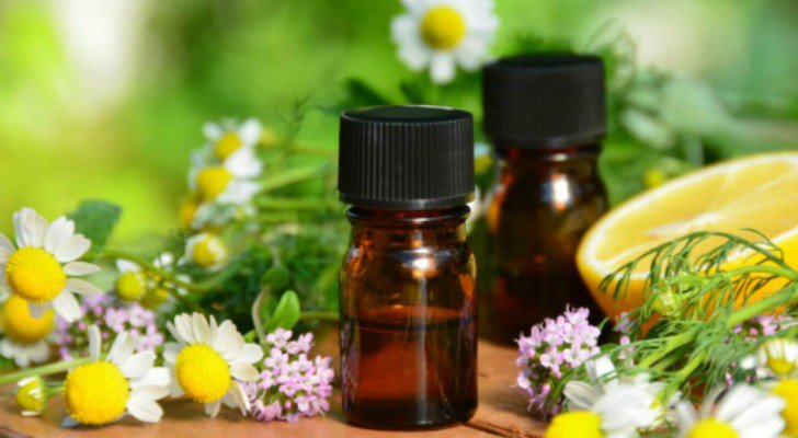 9 Natural Healing Essential Oils To Have In Your Home