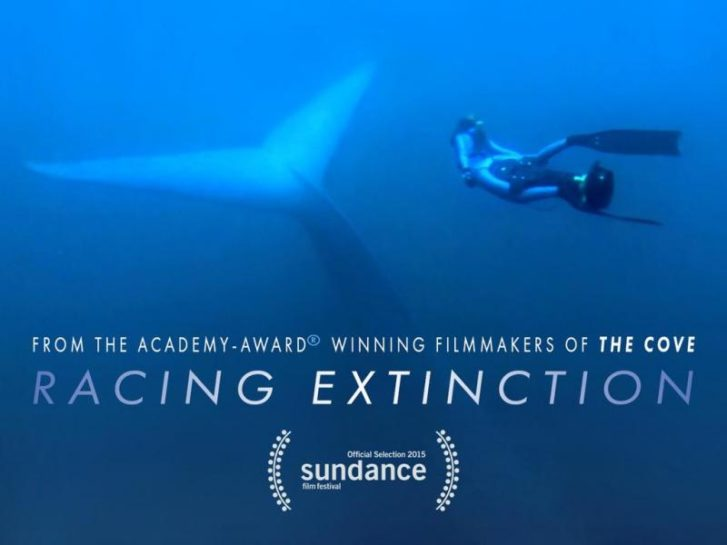 Why 'Racing Extinction' is One of the Most Important Films You'll Ever Watch