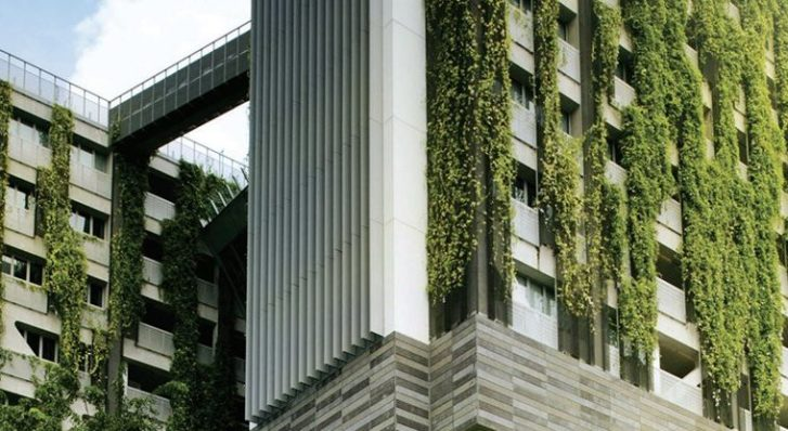 Why We Should Be Covering All Our Buildings With Plants