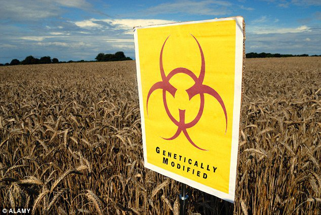 Important Facts About Genetically Engineered Foods You'll Never Hear From Mainstream Media