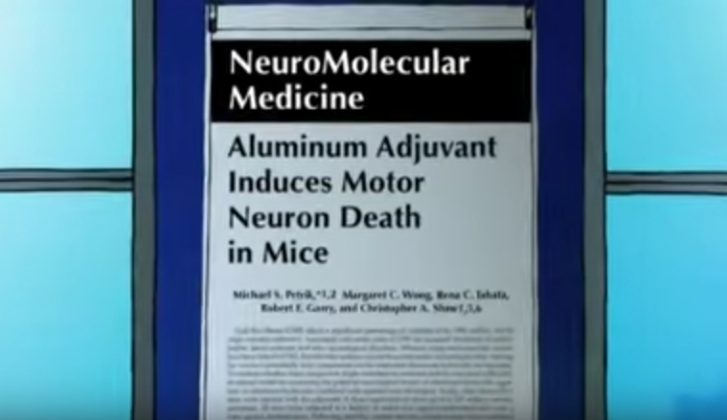 The Effect of Aluminum in Vaccines on Humans