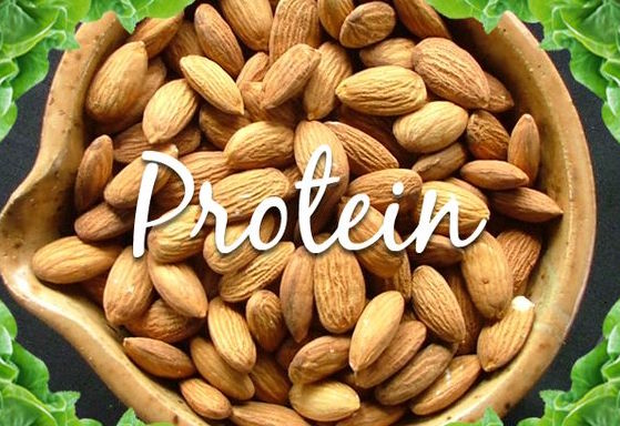 Get Your Protein From Plants, Not Meat, If You Want To Be Healthier. True Or False? See For Yourself
