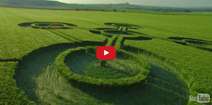 Up Close HD Drone Footage Of Four New Crop Circles That Just Appeared In The UK