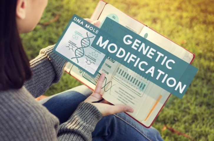 "Debunking One of The Greatest Myths About GE Crops: ""Genetic Modification of Crops Has Been Happening In Nature For Thousands of Years"""