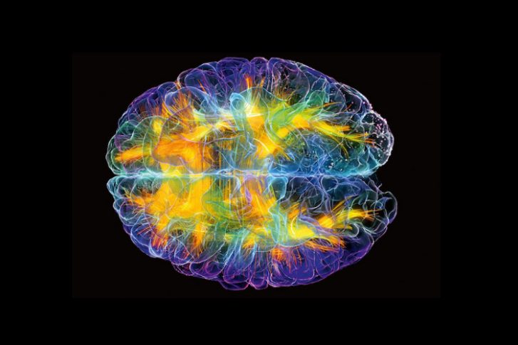 Meditation Can 'Turbo Charge' the Brain by Synchronizing Two Key Regions