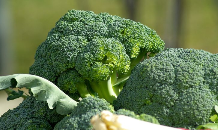 Broccoli Does AMAZING Things for Digestive Health and Overall Disease Prevention