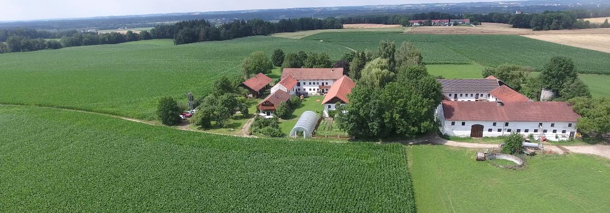 Lenzwald