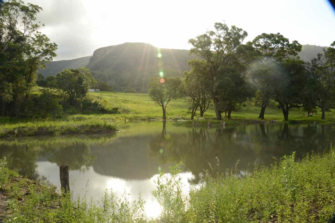 Famunity, Queensland, Australia