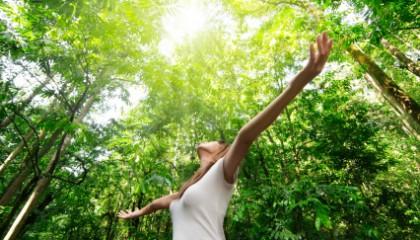 Wellness Sovereignty