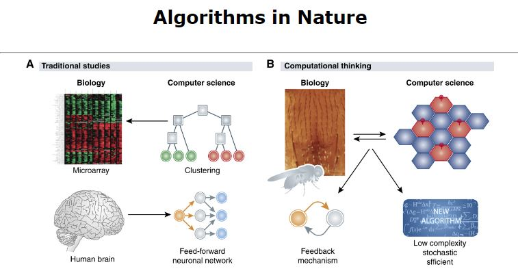 algorithms in nature: curated research papers