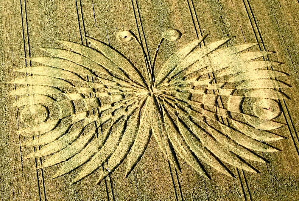 patty greer 2017 crop circle science – understanding REAL & fake crop circles (3)