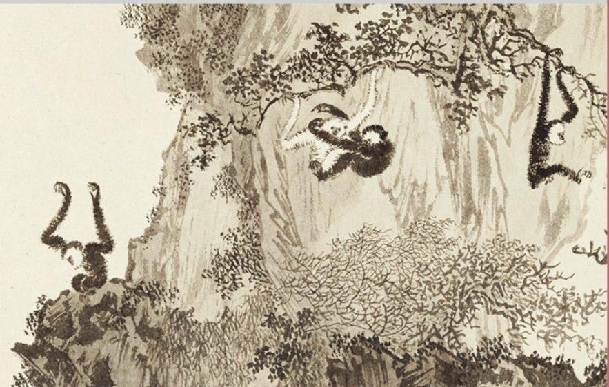 溥心畬作品「十猿圖」。(圖/史博館 提供)