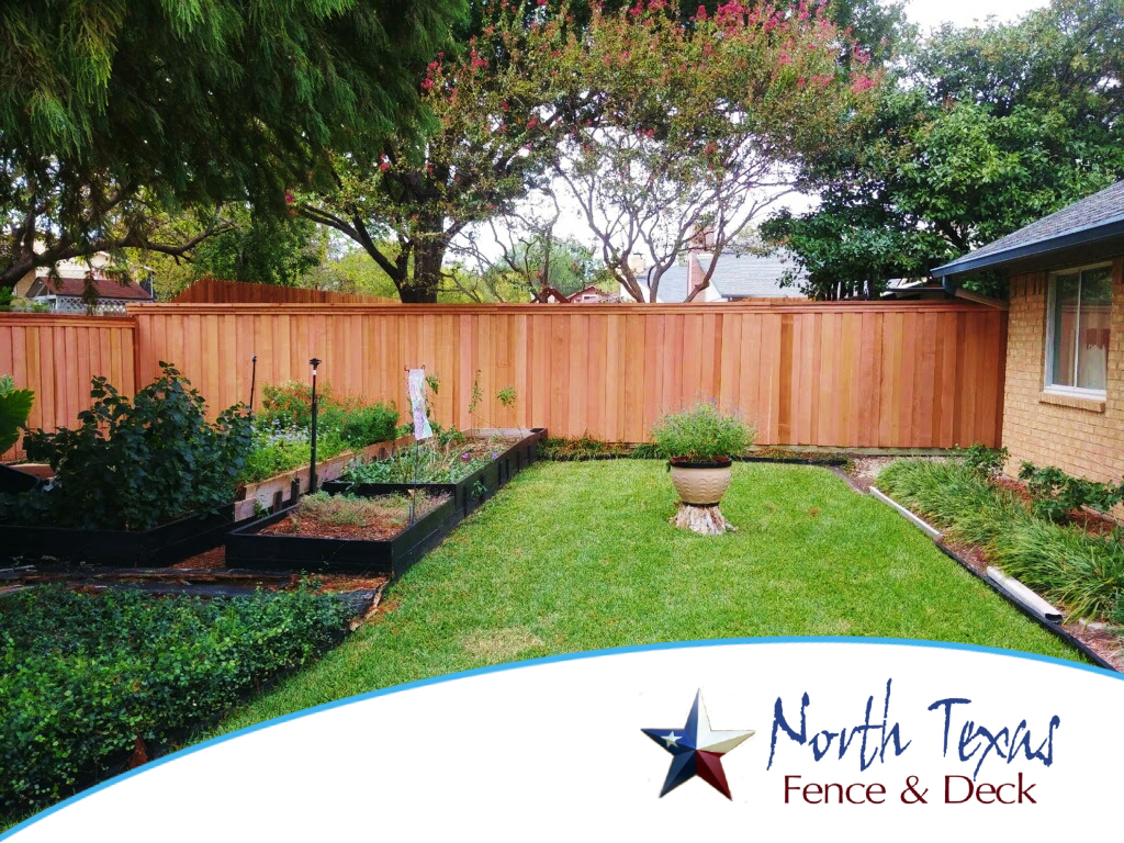 Wood Fence for Your Backyard