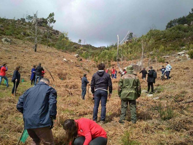 """TERRAS DE BOUROJS desenvolveu primeira edição do projecto """"Plantar uma árvore é plantar o futuro"""""""