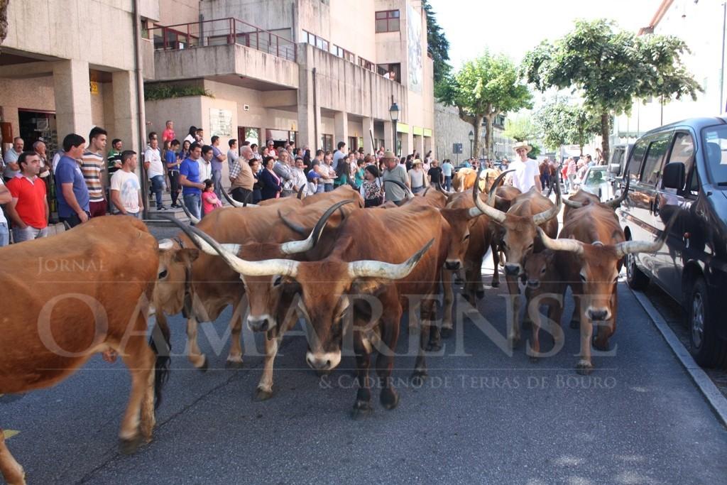 GERÊS (Terras de Bouro)Subida da Vezeira acontece este domingo