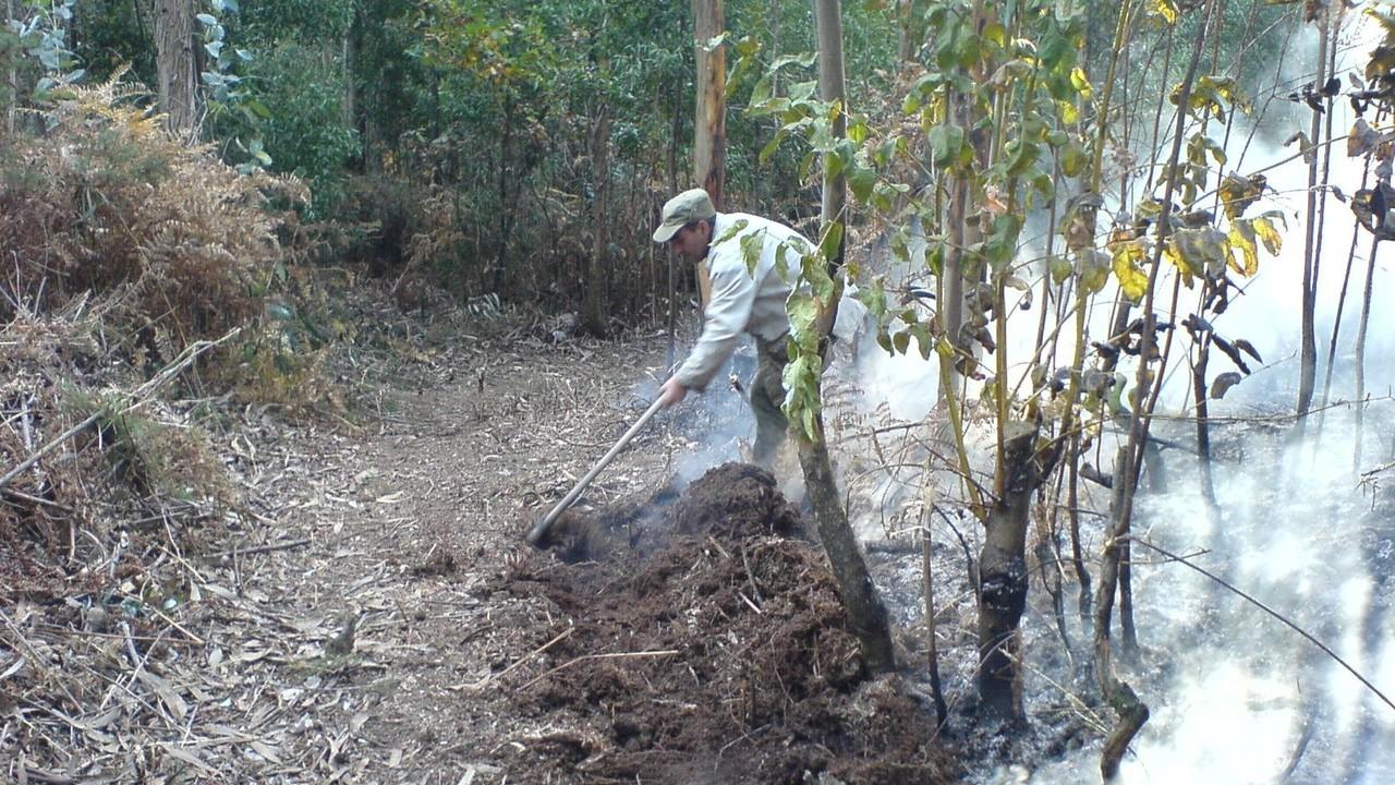 CRIME (Celorico de Basto)Detido em flagrante por incêndio florestal