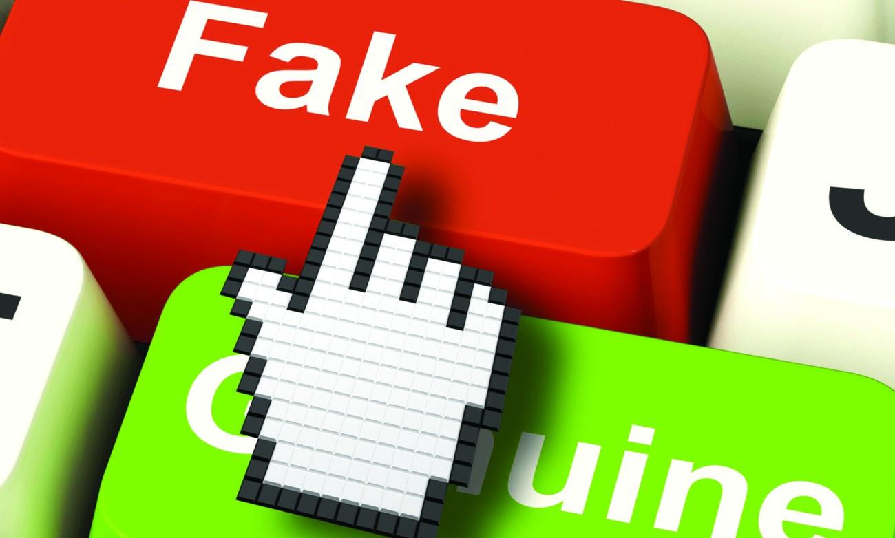 LEGISLATIVAS 2019 - Comissão Nacional de Eleições e Centro de Cibersegurança preparam acções contra 'fake news'