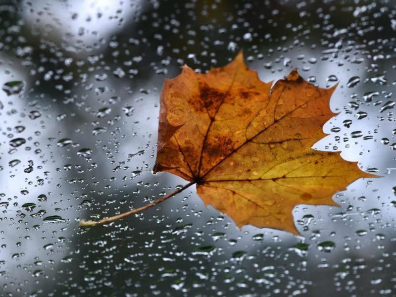 AMARES –  Câmara faz recomendações por causa do mau tempo