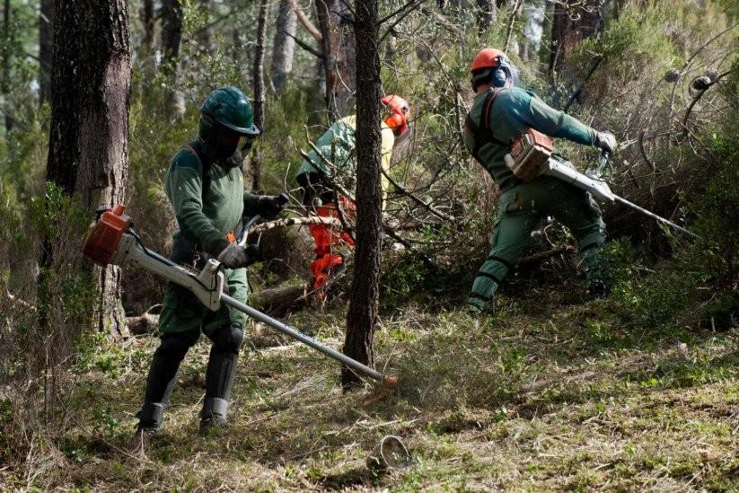BRAGA- Limpeza de Terrenos Florestais até 15 de Março