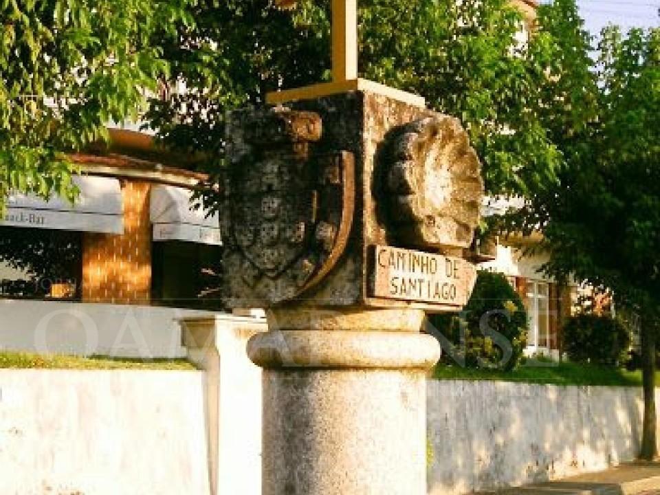 REGIÃO: Eixo Atlântico quer que Governo impulsione Caminho Português de Santiago a Património