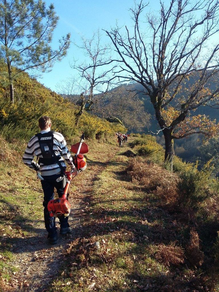TERRAS DE BOURO –  Sapadores florestais fazem limpeza de rede de trilhos pedestres