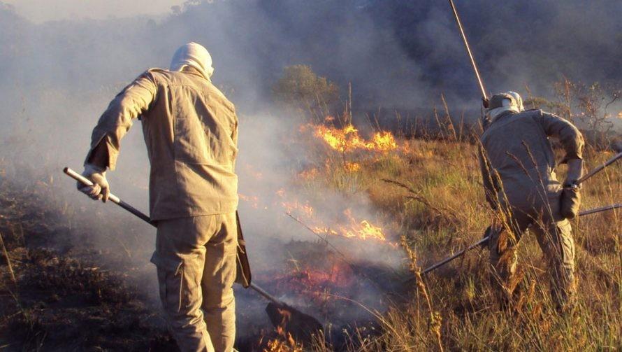 ALERTA –  Protecção Civil desaconselha queimas e queimadas em Terras de Bouro