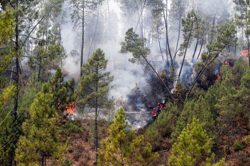 REGIÃO - Aldeias da serra d'Arga recebem no sábado meios para combater fogos