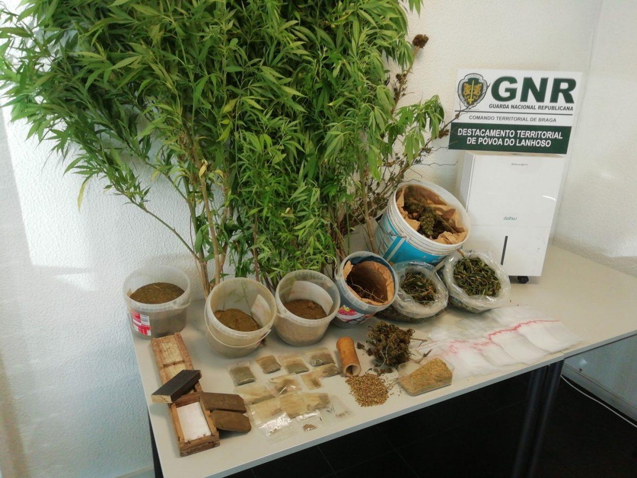 CRIME – GNR de Amares apanha homem com 1 060 doses de droga