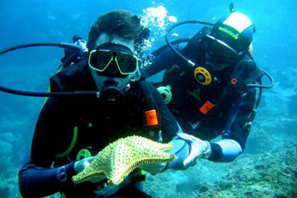 CIÊNCIA – UMinho organiza 20º Simpósio Ibérico de Estudos de Biologia Marinha