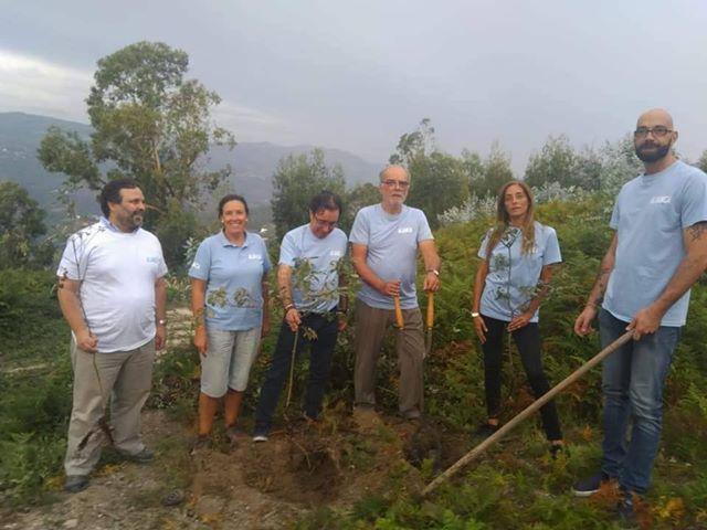 TERRAS DE BOURO –  Aliança planta árvores na Serra do Gerês