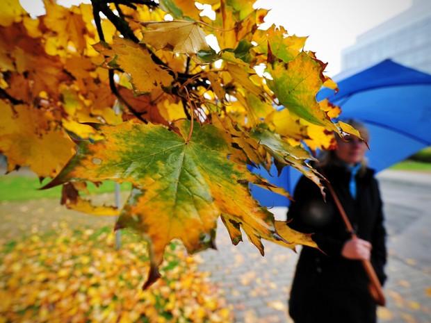 METEOROLOGIA - Chuva de Outono regressa este fim-de-semana acompanhada por descida da temperatura máxima