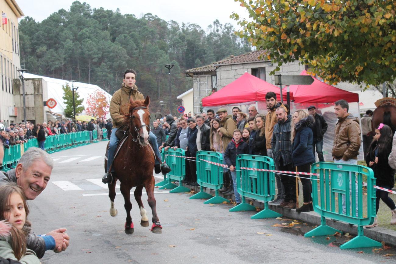 TERRAS DE BOURO - Corrida de Cavalos em Terras de Bouro levou centenas de pessoas às ruas na véspera do dia de São Martinho