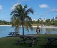Une journée à North Miami