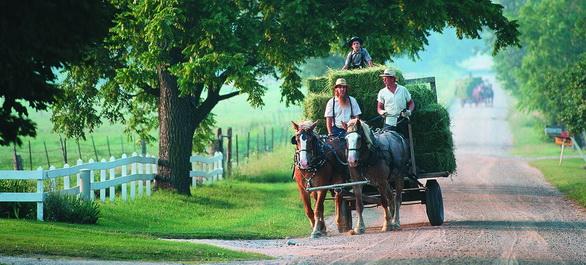 Un week-end chez les Amish