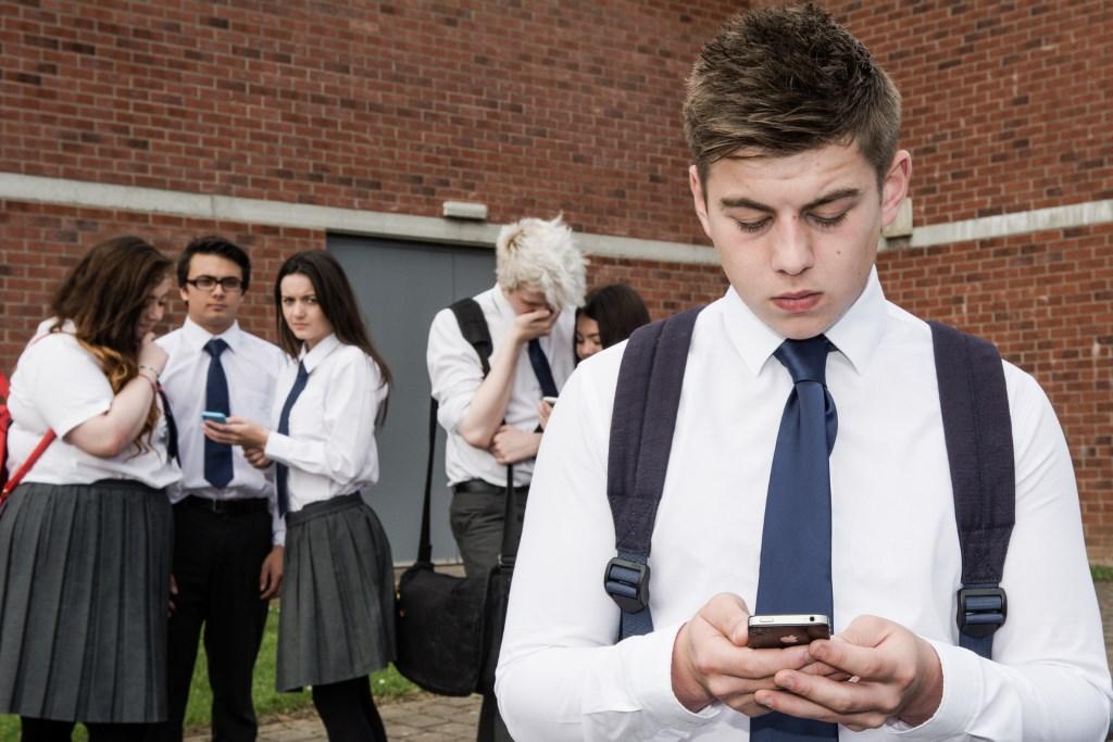Cyberbullies at school