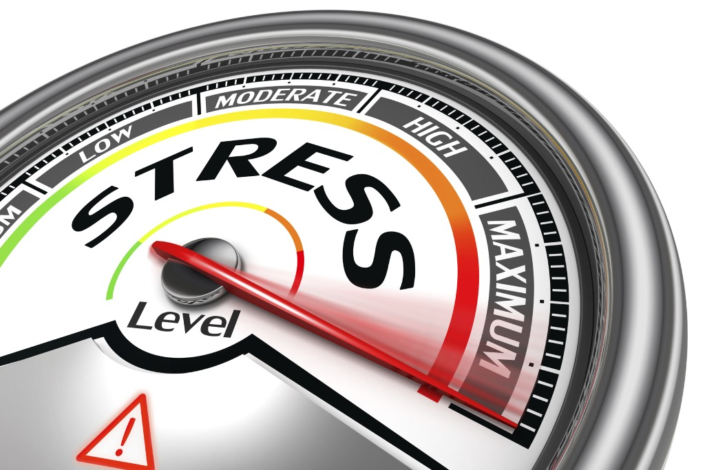 High Stress Dial