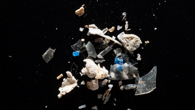 feature-news-environment-london-microplastics-pollution
