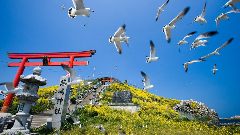 feature-travel-japan-hachinohe-area