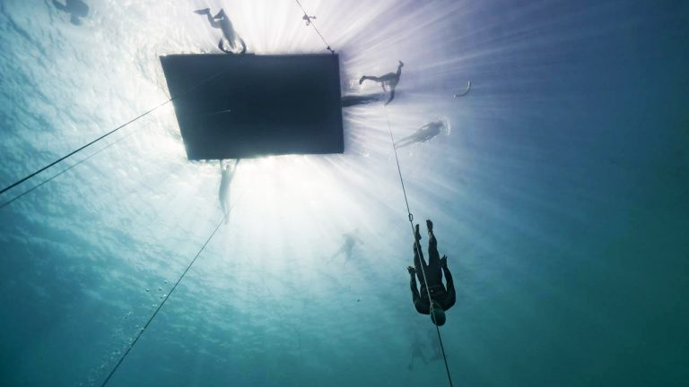 feature-introduction-free-diving-competition-vertical-blue