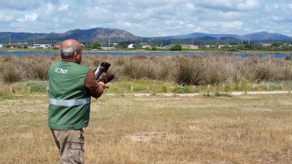 ESPOSENDEFeira da Natureza decorre nos dias 2 e 3 de junho na Zona Ribeirinha de Esposende
