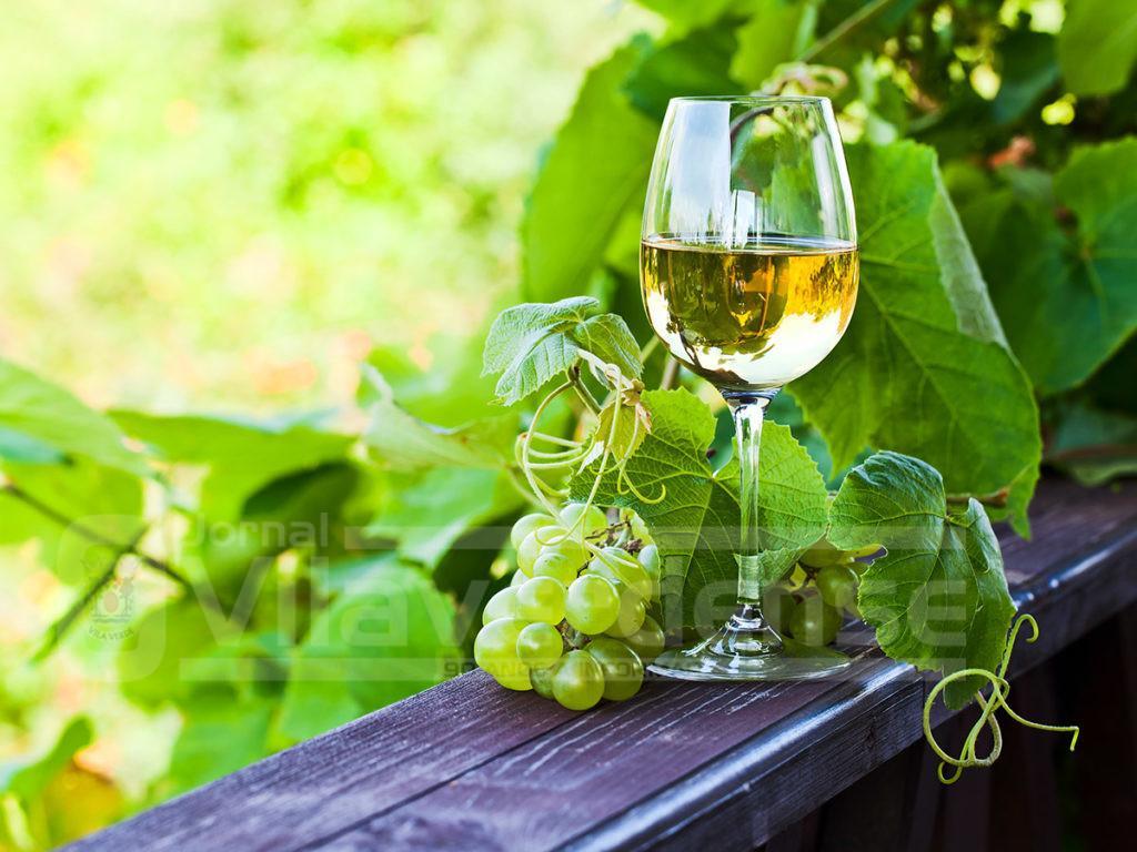 VINHO VERDE MOSTRA-SE EM NOVA IORQUEExportação de Vinho Verde para os EUA quase triplicou em dez anos
