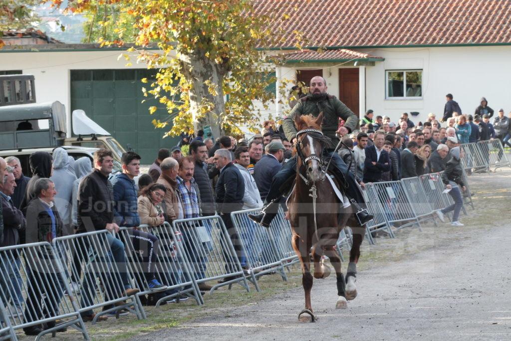 PICO DE REGALADOS - Quase meia centena de participantes na Corrida de Cavalos em passo travado