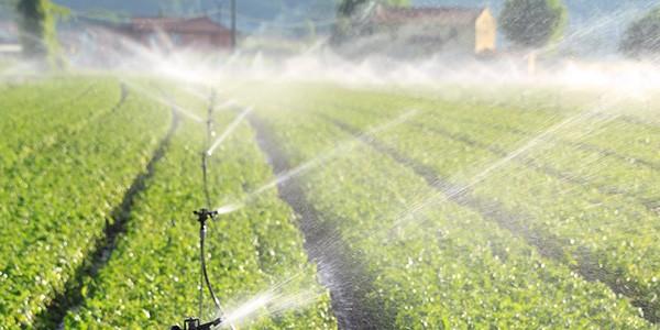 AGRICULTURA –  Investimento de 200 mil euros para reabilitar regadios de Vila Verde e Amares