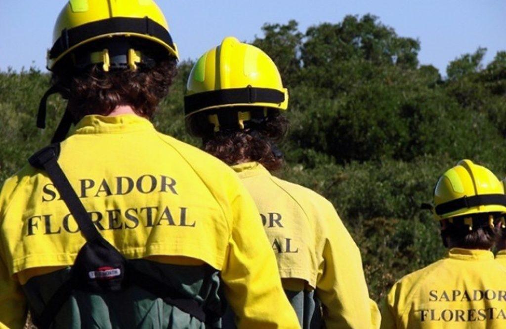 VILA VERDE –  Associação Florestal do Cávado inicia plano de queimadas controladas no Norte do concelho de Vila Verde