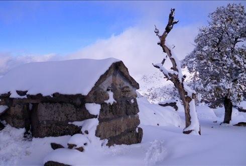 METEOROLOGIA –  Braga sob aviso laranja até sábado devido a queda de neve
